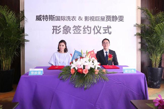 中国知名干洗品牌加盟--威特斯国际洗衣